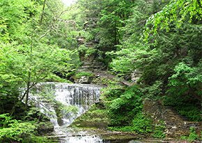 Buttermilk Falls State Park near City Lights Inn in Ithaca, New York Photo by Choess