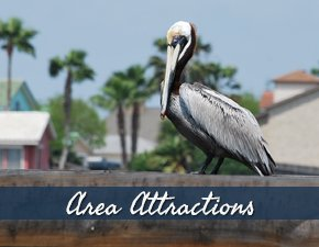 Corpus Christi Texas Area Attractions