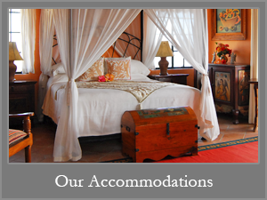 Stay in Our Casitas
