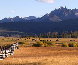 Sawtooth Mountains in Idaho