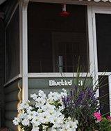 Bluebird Cottage at Colorado Cottages
