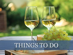 Things to Do in the Fennville and Saugatuck Michigan Areas