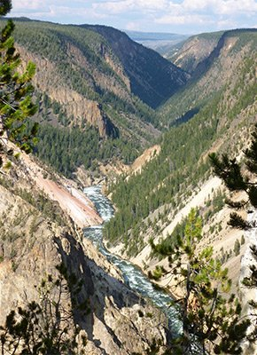 yellowstone canyon yellowstone national park yellowstone basin inn