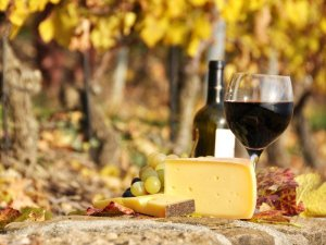 Wine and Cheese Area Attractions Bigby Creek