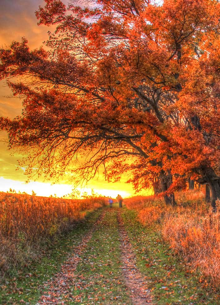 Sunset and Path in Wisconsin