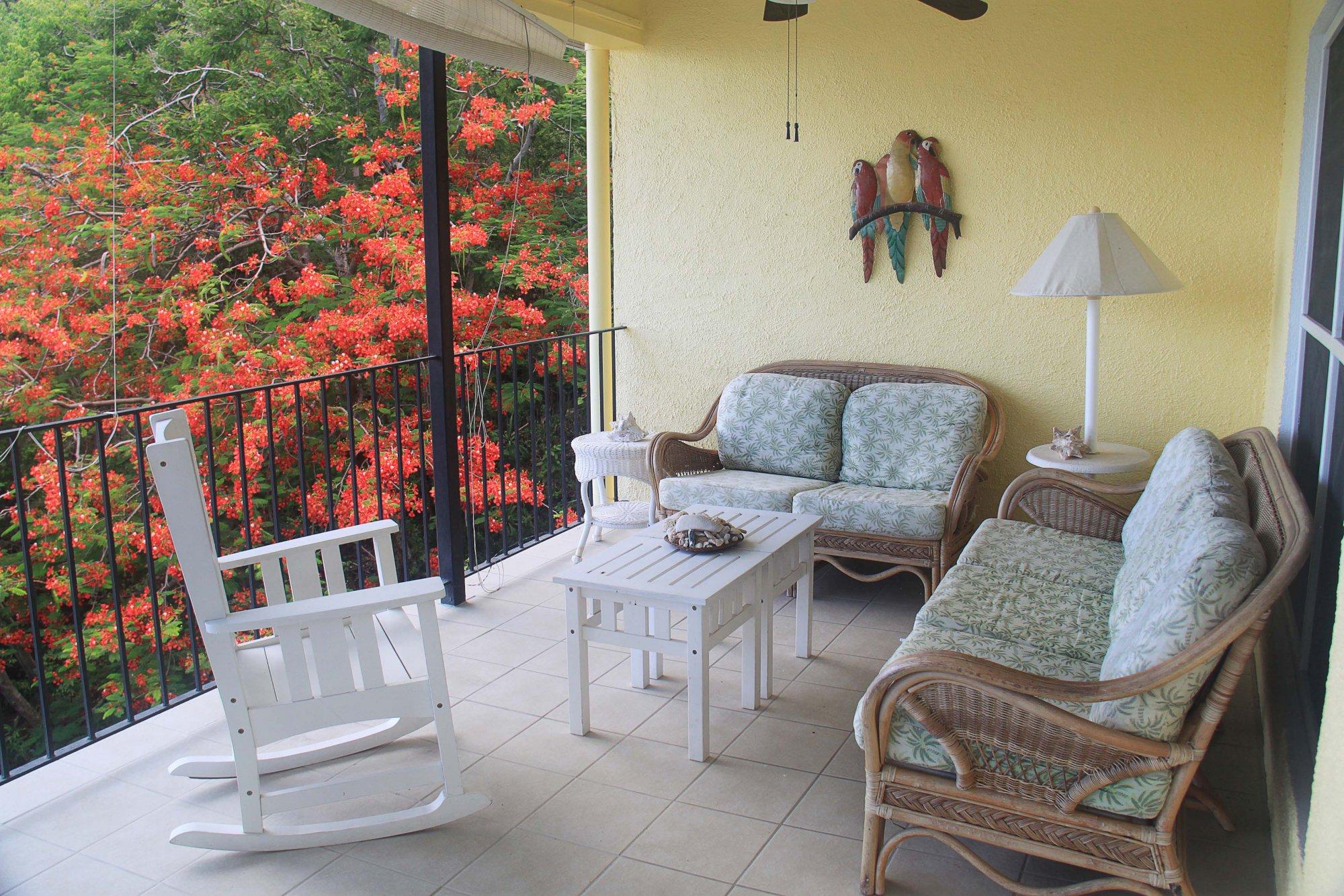 Gecko veranda