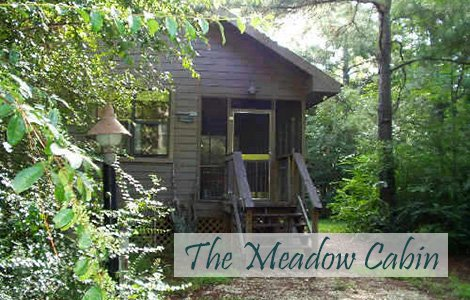 The Meadow Cabin at Little River Bluffs in Folsom, Louisiana