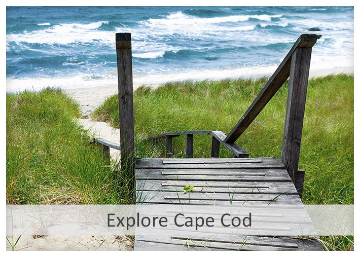 Explore Cape Cod