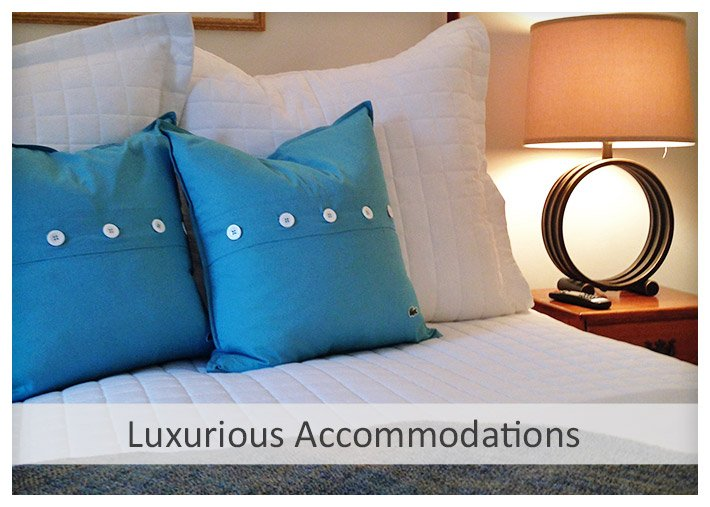 Luxurious Accommodations at Sea Meadow Inn in Brewster MA
