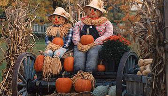 Annapolis valley pumpkin festival near Tattingstone