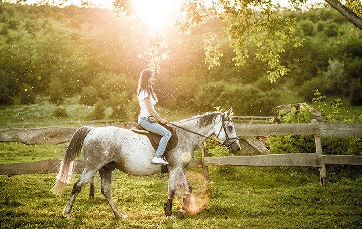 horseback riding near Mountain Valley Farm