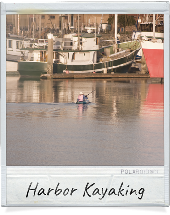 Kayaking in the Humboldt Bay Harbor