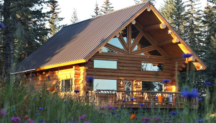Bear Paw Adventure Anchor Point Ak Cabin Rentals On The