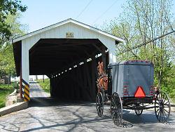 amish buggy in pennsylvania