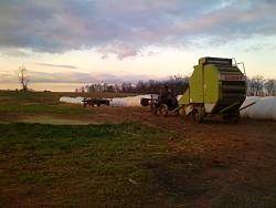 amish harvest farm