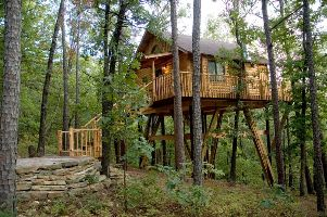 Towering Pines Treehouse