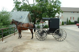 Amish Stores In Ohio Amish Business Directory