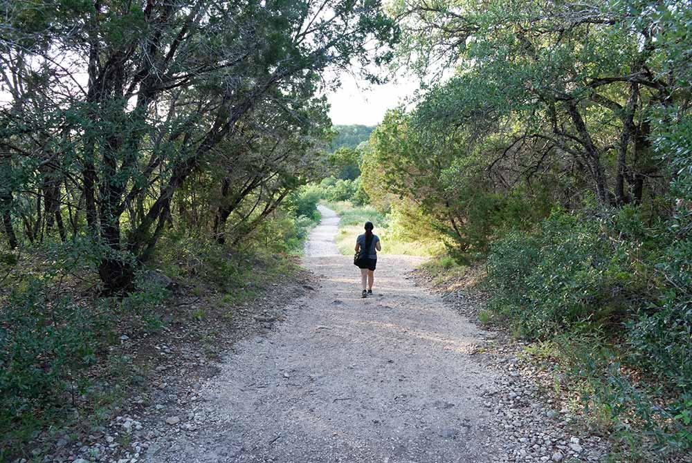 Person walking down dirt path between trees