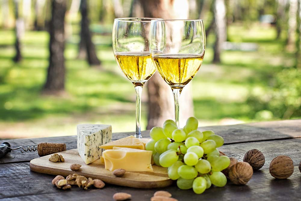 Wine, cheese, and nuts in vineyard
