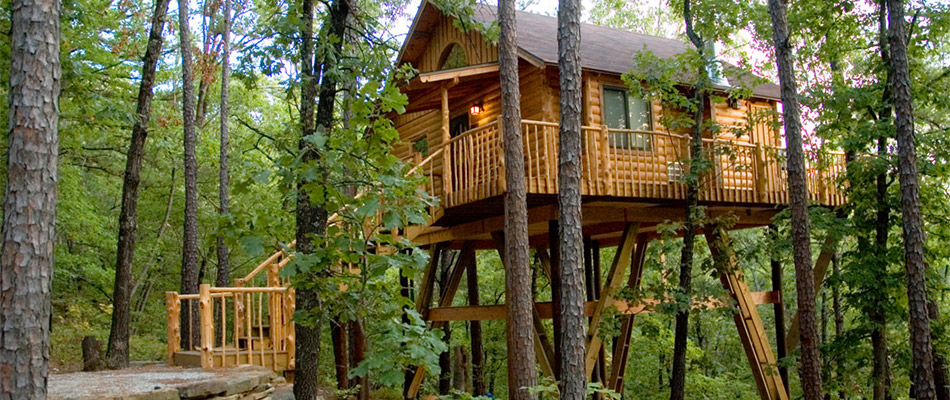 Reach New Heights Tree House Hotels Abode