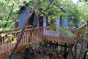 Hidden Oak Treehouse
