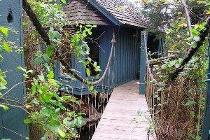 Cedar Shade Treehouse