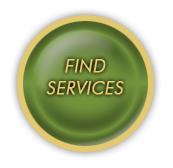 Find Services button