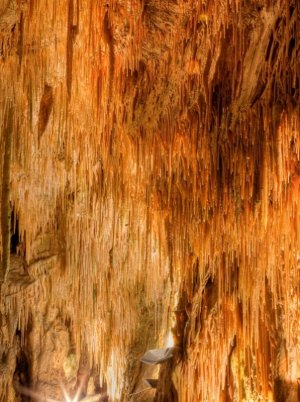 Soda Straw Stalactites in Smoke Hole Caverns