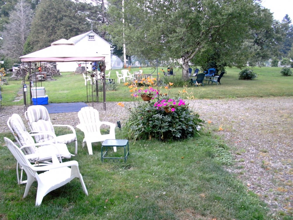 Lawn chairs and canopies in a field