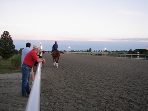 group watching horse train on track