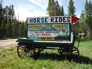 Sign on U.S. Highway 212 marking the lane to Skyline Guest Ranch
