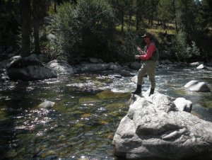 fishing on Hellroaring creek in Yellowstone National Park