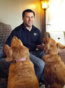 The Assistant Innkeepers - Golden Retrievers