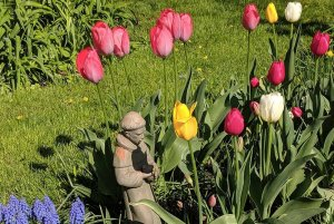 Monk statue in flowers in garden