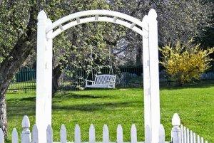Swing bench hung on tree in yard