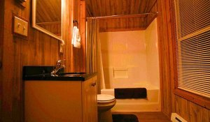 A bathroom in a wood cabin