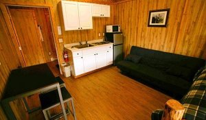 Couches, a stove, sink, microwave, and sink
