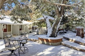 Tree, table, and inn in snow