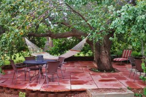 A patio with tables, chairs, a hammock and an apricot tree
