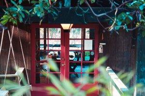 Glass doors through foliage