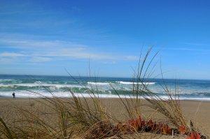 beautiful waves at beach