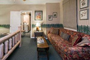 sofa and pine tree wallpaper