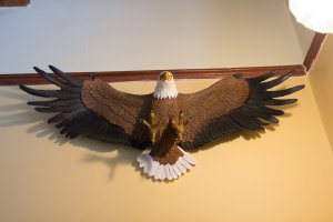 Hines Mansion Eagle's Nest Room eagle decor mounted to wall