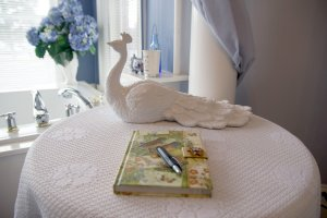 Hines Mansion Kitty Hine's Room room decor notebook and ceramic peacock