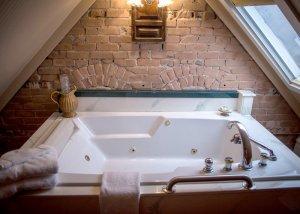 Hines Mansion Library Room bath tub skylight