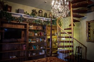 Hines Mansion Library Room spiral staircase bookshelves chandelier