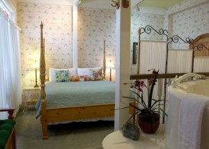 Hines Mansion Secret Garden Room bed and bath tub
