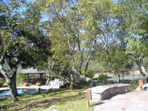 7th Street at Woodfield Properties and Vacation Homes
