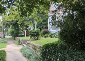 Tree-lined street in fron of Rosemont = 15th Street