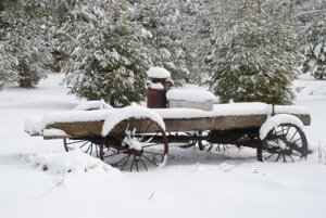 wagon covered in fresh snow
